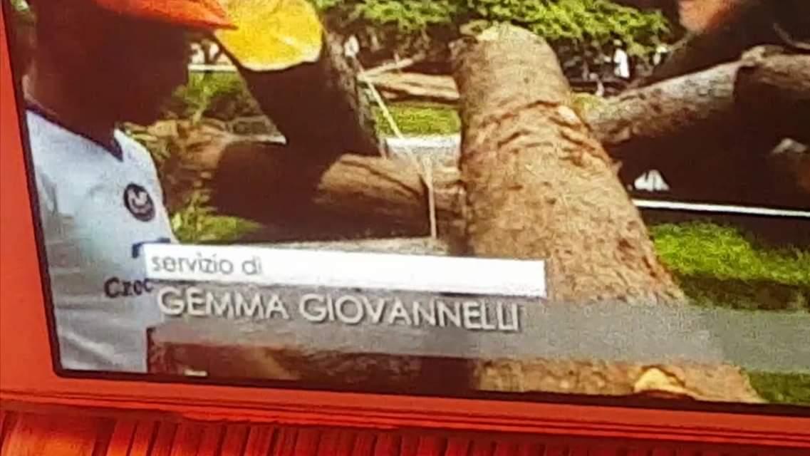 Servizio di Gemma Giovannelli